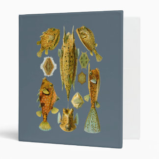 Boxfish or Cowfish 3 Ring Binder