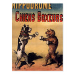 Boxing dogs retro style postcard postales