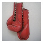 Boxing Gloves Canvas Poster