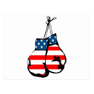 Boxing Gloves USA Postcard