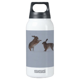 Boxing hares 10 oz insulated SIGG thermos water bottle