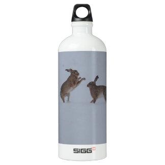 Boxing hares SIGG traveler 1.0L water bottle