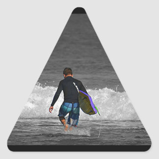 BOY AND HIS BOOGIE BOARD TRIANGLE STICKER