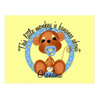 Boy - Bananas About Grandma Tshirts and Gifts Postcard