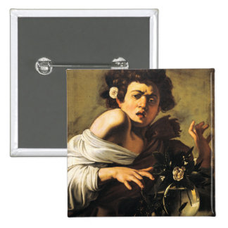 Boy Bitten by a Lizard, Caravaggio Pinback Button