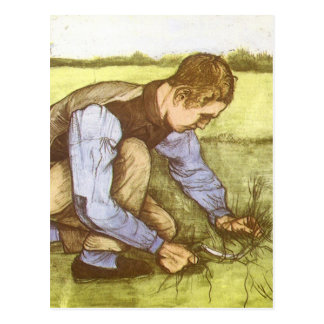 Boy Cutting Grass with Sickle by Vincent van Gogh Post Cards