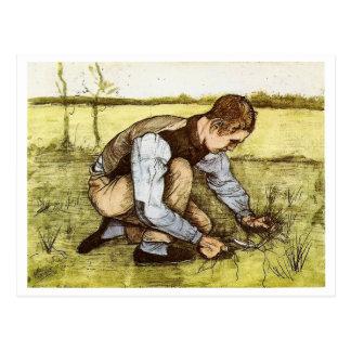 Boy Cutting Grass with Sickle, Vincent van Gogh Postcard