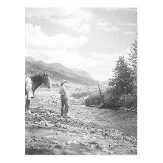 Boy fly fishing. postcard