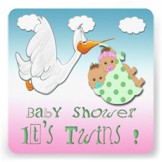 Boy Girl Twins - Stork Baby Shower Invitation