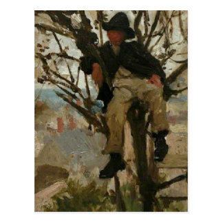 Boy in a Tree Postcard