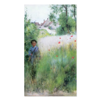 Boy in Meadow - Sommerbilder Double-Sided Standard Business Cards (Pack Of 100)