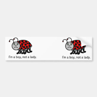 Boy Lady Bug Bumper Sticker