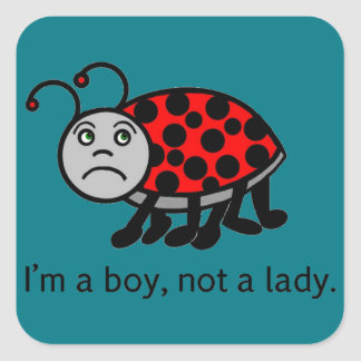 Boy Lady Bug Square Sticker
