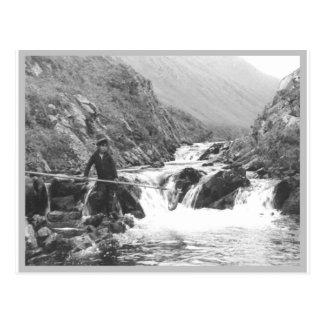 Boy Netting a Fish Postcard