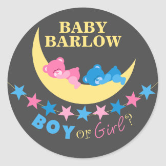 Boy Or Girl Teddy Bears On Moon Gender Reveal Stickers