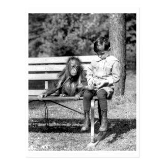 Boy & Orangutan Vintage National Zoo Washington Postcard