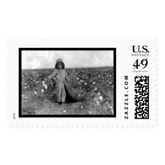 Boy Picking Cotton in Comanche, OK 1916 Stamps