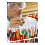 Boy pouring mixture from test tube postcard