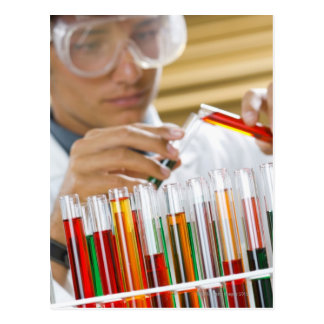 Boy pouring mixture from test tube post card