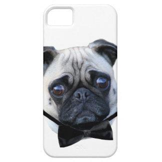Boy pug dog iPhone SE/5/5s case