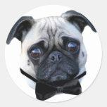 Boy Pug stickers