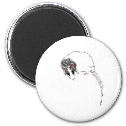 Boy-Rat Fridge Magnets