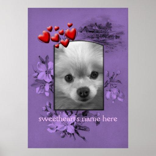 Boyfriend Photo Frame, Pomeranian Puppy Poster