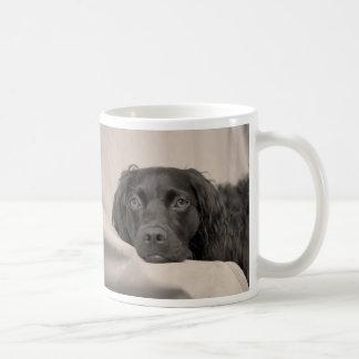 Boykin Spaniel Coffee Mug