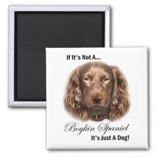 Boykin Spaniel Gifts Magnet