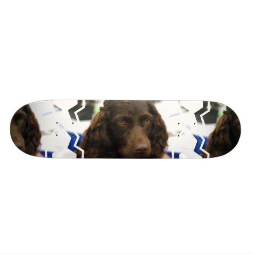 Boykin Spaniel Skateboard