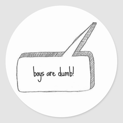 Boys are dumb stickers