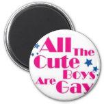 BOYS-GAY MAGNET