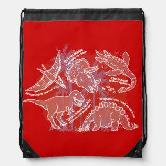Boys how do you say dinosaur red drawstring bag