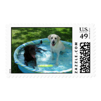 Boys of Summer Postage Stamps