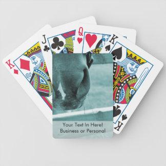 bozal del caballo con el azul de la cerca del heno barajas de cartas