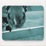 bozal del caballo con el azul de la cerca del heno tapete de ratón