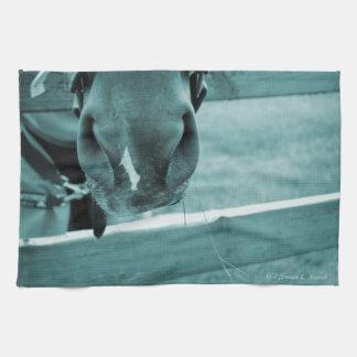 bozal del caballo con el azul de la cerca del heno toalla