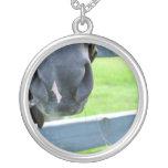 bozal del caballo con la cerca del heno collares personalizados