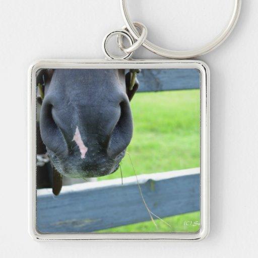 bozal del caballo con la cerca del heno llaveros personalizados