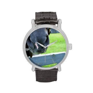 bozal del caballo con la cerca del heno reloj