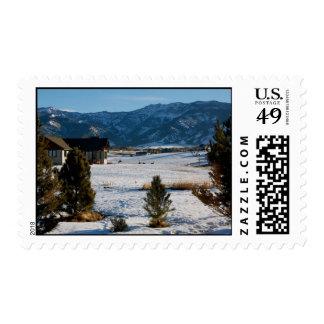 bozman montana postage