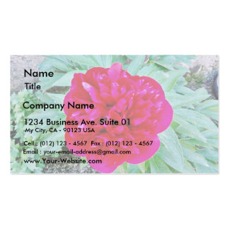 Bozur Double-Sided Standard Business Cards (Pack Of 100)