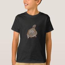BR- Box Turtle Shirt