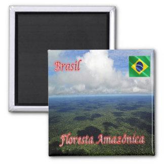 BR - Brazil - Amazon Rainforest Magnet