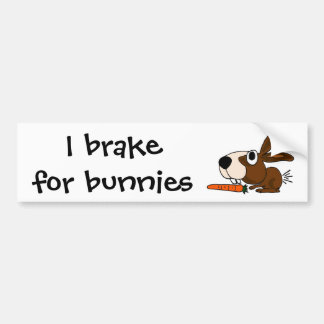 BR- Funny Bunny Rabbit and Carrot Bumper Sticker