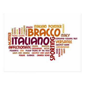 Bracco Italiano Postcard