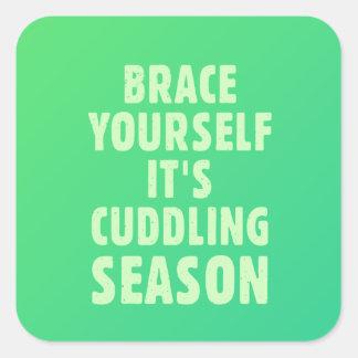 Brace yourself, it's cuddling season square sticker