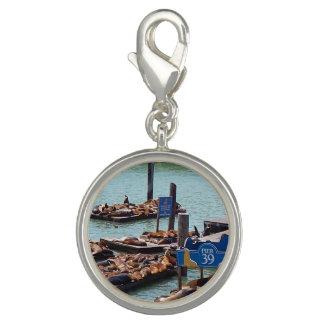 Bracelet Charm Silver Plated Sealions Pier39