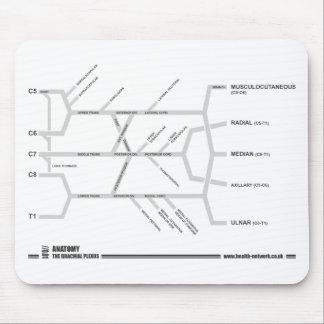 Brachial Plexus mouse mat Mouse Pad
