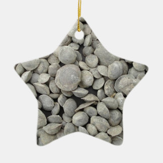 Brachiopod shell fossils pattern Double-Sided star ceramic christmas ornament